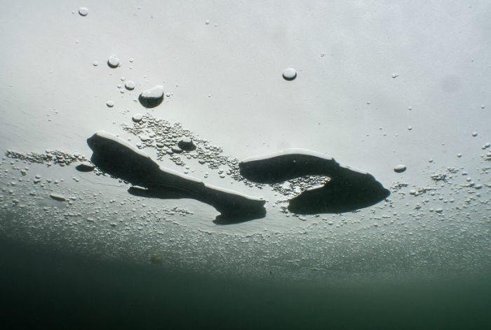 2e Christophe Muzyk12 700x470 - Aquaclics givrés : les photos primées
