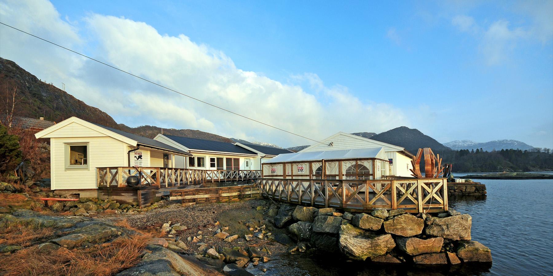 gulen plongee - Étonnantes plongées dans les fjords norvégiens !
