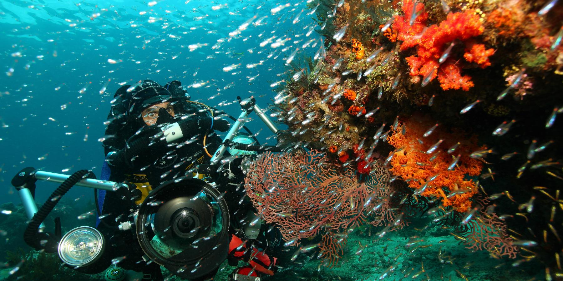 IMG 6767 Gilles di Raimondo - Papouasie : expédition au cœur d'un monde perdu
