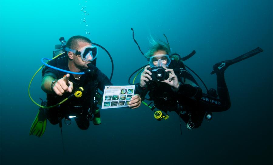 Des Fun Explorers en action © Yvan Chocoloff Objectif Atlantide