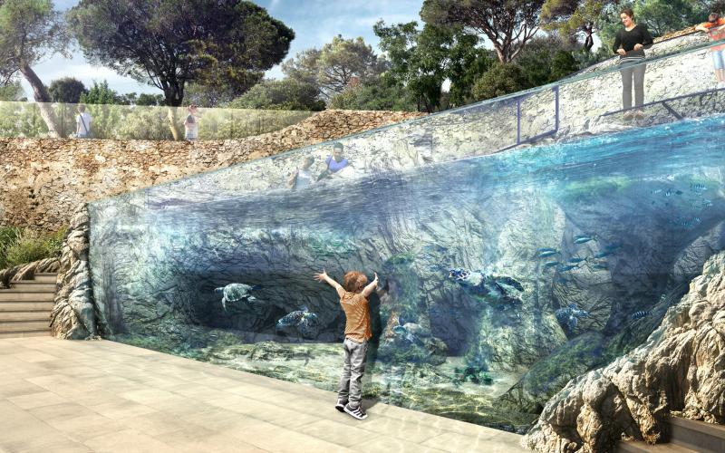Le bassin, pouvant accueillir jusqu'à cinq tortues, sera accessible au public© Architecte Maître d'œuvre : Patrick Raymond