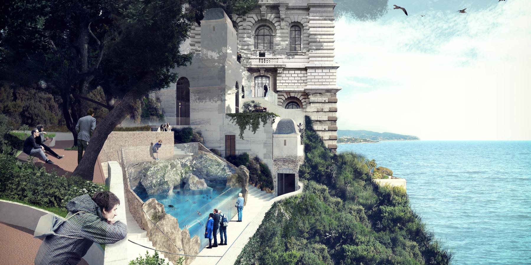 Vue depuis hotel insectes - Un centre de soin pour les tortues de mer en projet à Monaco