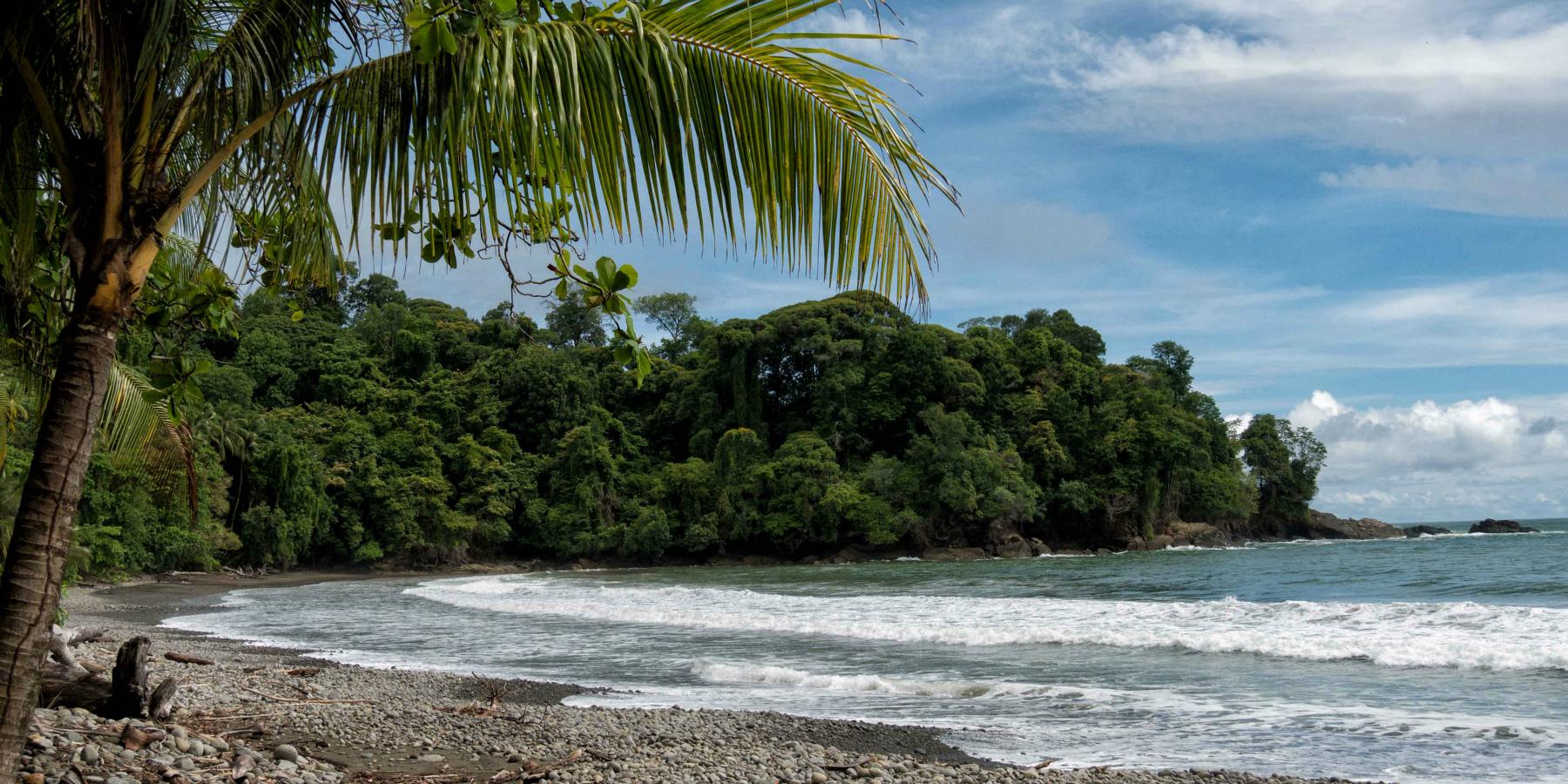 P1020184 Charlie Hervier couv - Vidéo : Playa del Coco et Bahia Drake, sur la côte Pacifique du Costa Rica