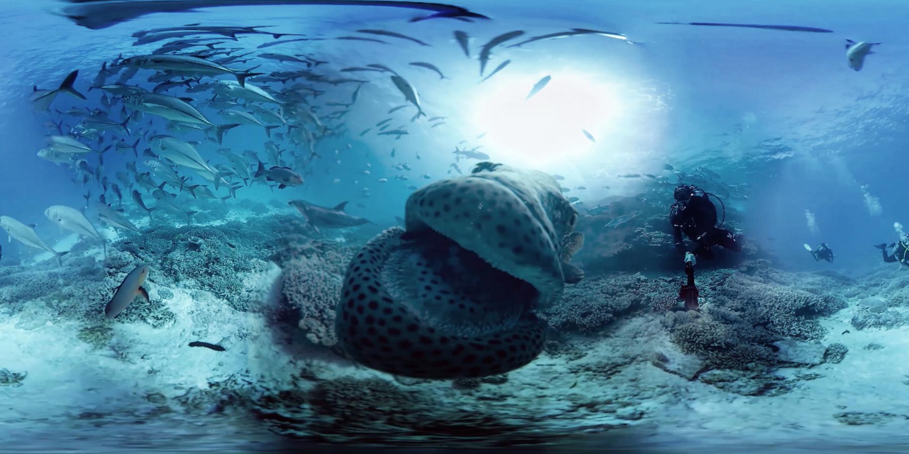 PHOTO UNE VIRTUAL TRIP - Virtual trip 360° : la nouvelle attraction de la cité de l'Océan à Biarritz
