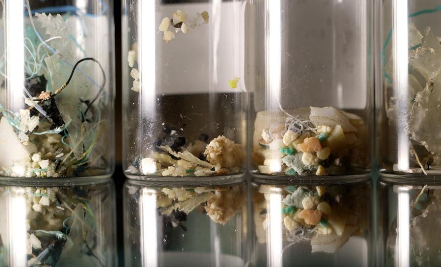 La plupart des déchets plastique mesurent moins de 5 millimètres et se retrouve sous forme de paillettes © VIA DECOUVERTES