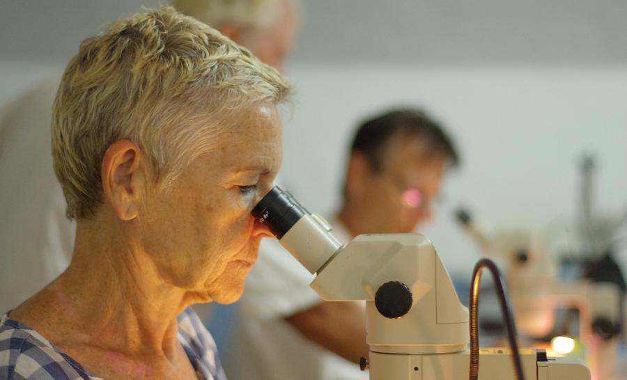 Une fois les échantillons remontés il faut les trier pour pouvoir les classer © Cyril Chambard / MNHN / Madibenthos