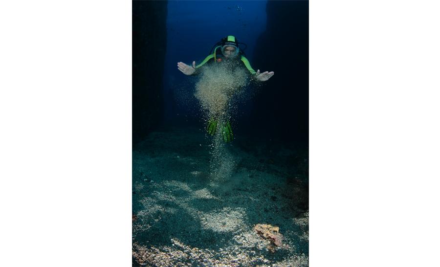 5e : Michel BRAZIER - Laurence REMISE- prix thème sable © Michel Brazier/36e championnat de France de photo sous-marine