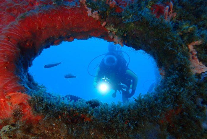 ONI 16 2 700x470 - 13è concours de photographie sous-marine de Monaco : les résultats