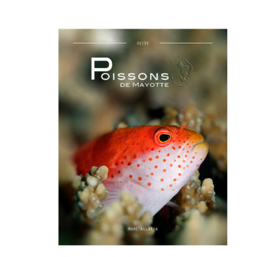 all02poissonmayotte