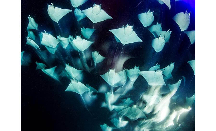 3è prix grand angle : Franco Banfi de Suisse © Franco Banfi