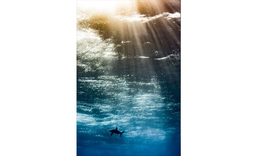 1er catégorie meilleur espoir : Horacio Martinez d'Argentine avec 'Oceanic in the sky' © Horacio Martinez/UPY 2017