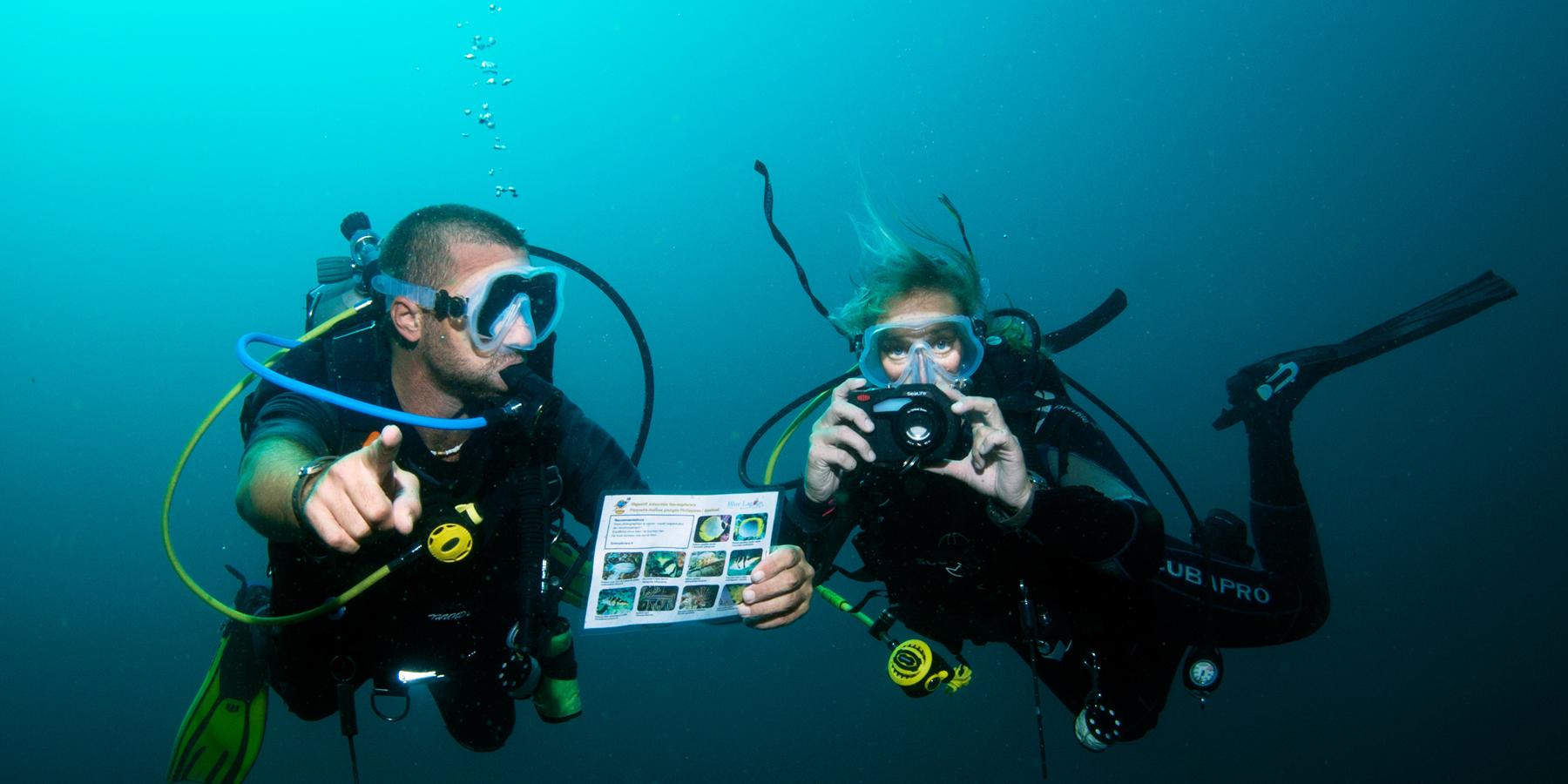 chasse au tresor - Objectif Atlantide : la chasse au trésor 2017 est lancée en Méditerranée