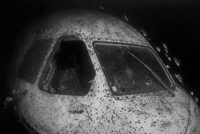 A l'avant de l'avion, le cockpit est accessible aux plongeurs. © Pascal Sturm