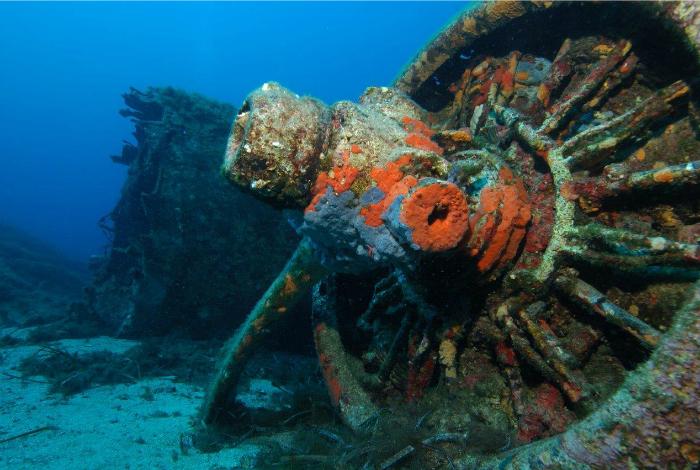 Un moteur du B17©Nicolas Barraqué