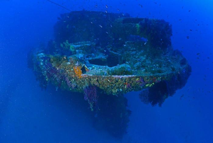 L'avant du Donator, recouvert de gorgones et peuplé de nombreux bancs de poissons ©Nicolas Barraqué