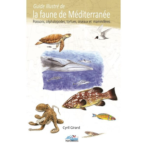 Guide illustré de la faune de Méditerranée, poissons, céphalopodes, tortues, oiseaux et mammifères