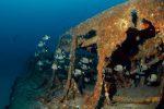10 épaves incontournables des côtes françaises