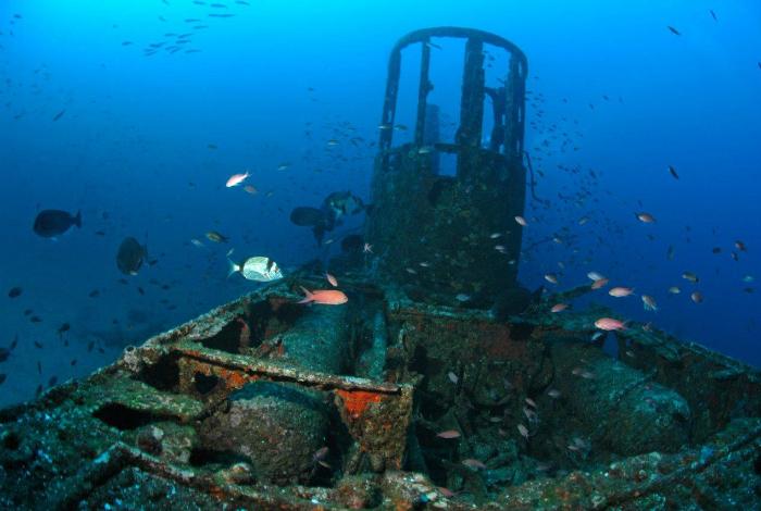 Anthias, castagnoles,... des dizaines de bancs de poissons accompagnent les plongeurs ©Nicolas Barraqué