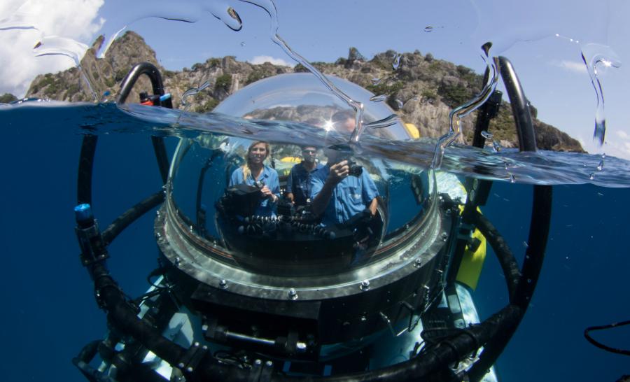 Début d'une immersion inoubliable à bord du DeepSee. © Undersea Hunter