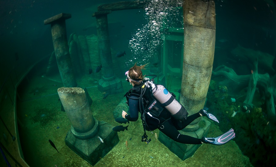 Exploration de la fosse Todi en Belgique. ©Jean-Christophe Grignard