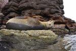 Grand Jeu des Abonnés : abonnez-vous à Plongez !, et gagnez un séjour à La Paz avec H2O Voyage