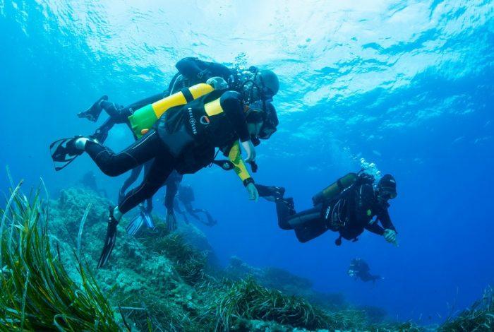Accompagné de Marc, son moniteur, Apollo a très vite trouvé ses marques sous l'eau ©Dominique Barray