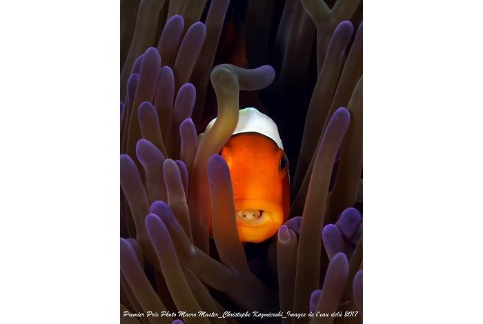 Premier prix biologie master © Christophe Kazmierski
