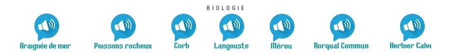 Cette nouvelle fonction vous permet d'écouter les sons particuliers émis par chaque organisme.