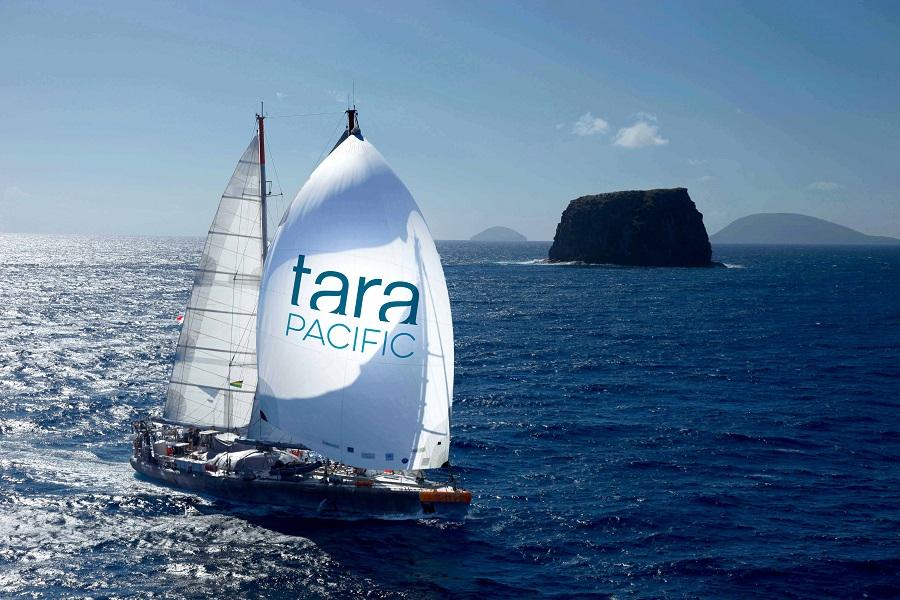 Le Tara traverse l'océan Pacifique dans le but d'étudier les coraux. © Francis Latreille_-Tara Expeditions Foundation
