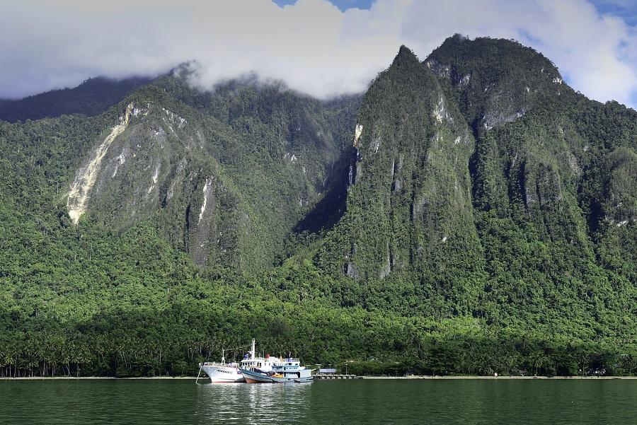 L'imposant massif de Lengguru en Papouasie occidentale. © IRD - Gilles Diraimondo et Régis Hocdé
