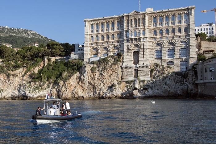 Le grand départ est arrivé, Rana quitte le musée océanographique pour retrouver son milieu naturel. © M. Dagnino