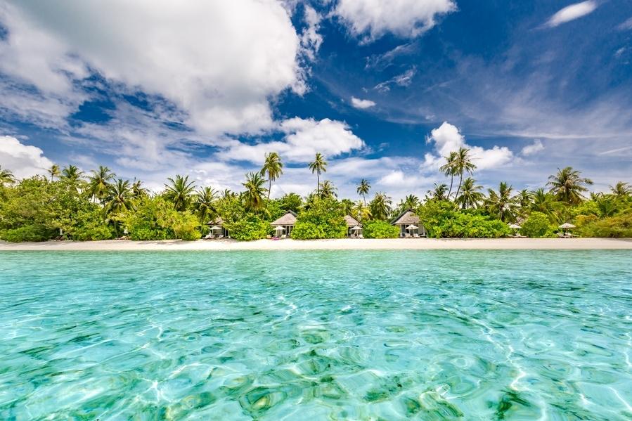 """L'hôtel Lux South Ari Atoll accueille chaque année le festival """"Underwater"""" aux Maldives."""