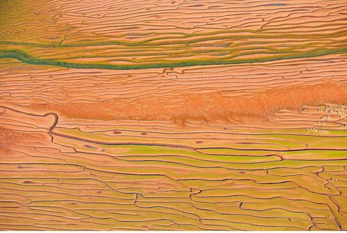 """Catégorie graphisme, forme et matière de la nature """"Underwater lines"""". © Père Soler Isern."""
