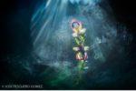 L'eau au cœur du 22ème festival de photo animalière et de nature de Montier-en-Der