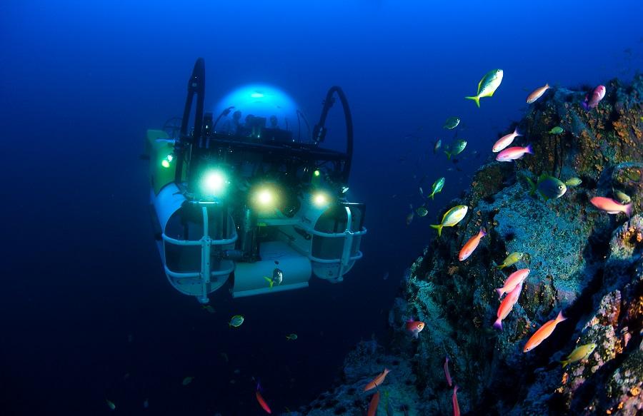Le DeepSee face à un récif profond. © Undersea Hunter