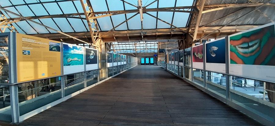 Exposition en gare de Nice. © DR.