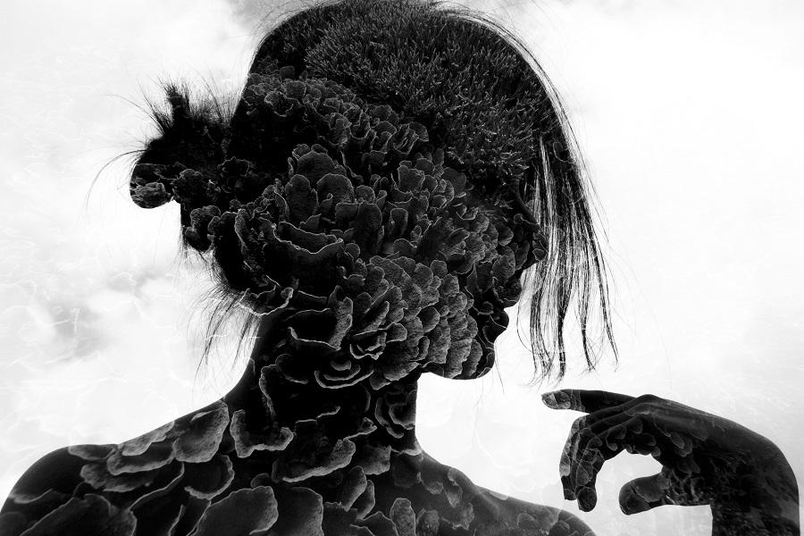 """Layered thoughts"", Komodo. © Mok Wai Hoe / UPY2020"