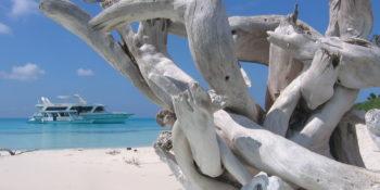 Croisière aux Maldives