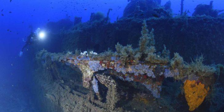 Épave de l'Alcyon C en Corse