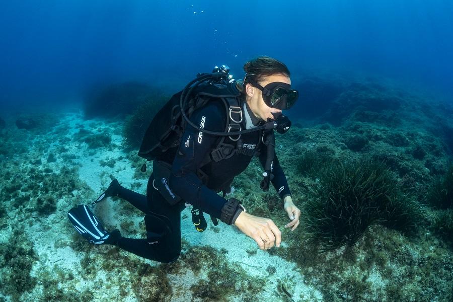 Avant d'être un homo palmus le plongeur est avant tout un bipède, au plus... © Fabrice Dudenhofer