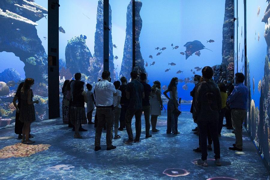 Des visiteurs découvre l'exposition Immersion. © M. Dagnino