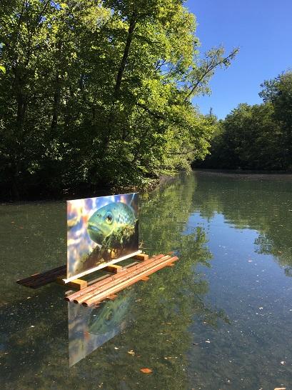 """Exposition """"Les dessous du Lac"""" © Romain Patoux"""
