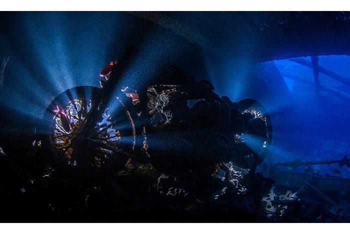 Premier prix épaves © Taner Atilgan