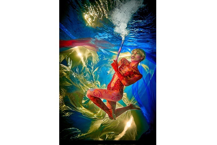 Premier prix art sous-marin © Rodger Klein