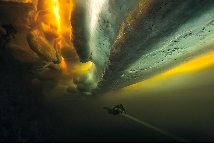 Deuxième prix art sous-marin © Petr Polách