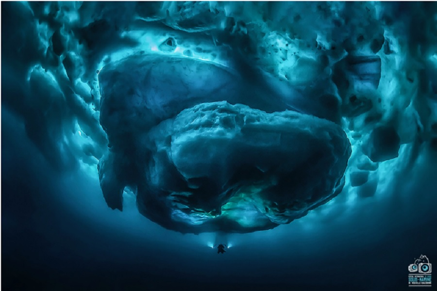 Manta d'argent - grand angle - FIISMNC 2020 © Tobias Friedrich