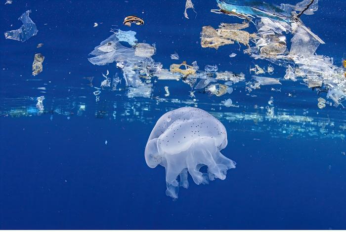 3ème prix Pollution. © Peter de Maagt