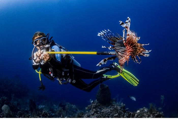 3ème prix - préservation des océans © Stephanie Doniger