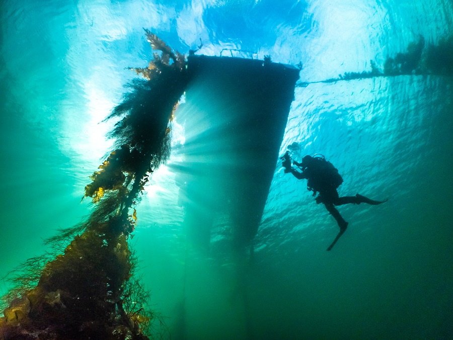 3ème prix vivre ensemble - eaux britanniques. © Dan Bolt / UPY2021