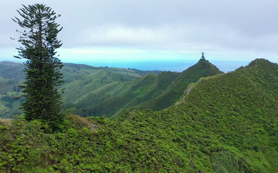 Vue sur Diana's Peak, point culminant de l'île, à 823 mètres : le parc naturel qui l'entoure abrite une extraordinaire forêt tropicale humide. © Alexandra Childs et Rémi Demarthon / Fathom Pictures